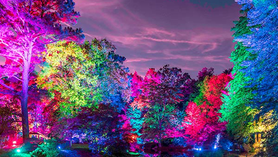 Maymont's Garden Glow Is The Outdoor Lighting Display We All Need This Fall