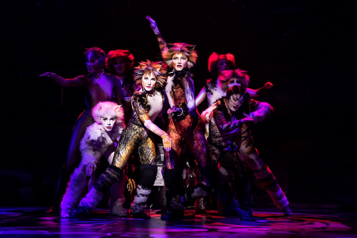 Touring Production Of CATS At Altria Theater Is All That For Broadway Lovers!