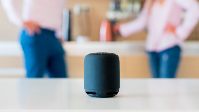 Smart Speakers And Family Life